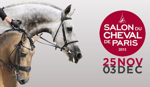 Salon du cheval de paris 2017 - Salon du cheval albi ...